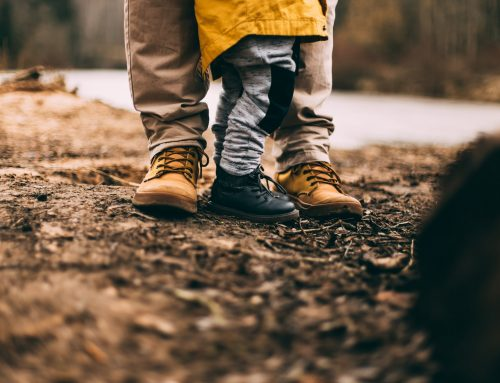 7 roles of a father